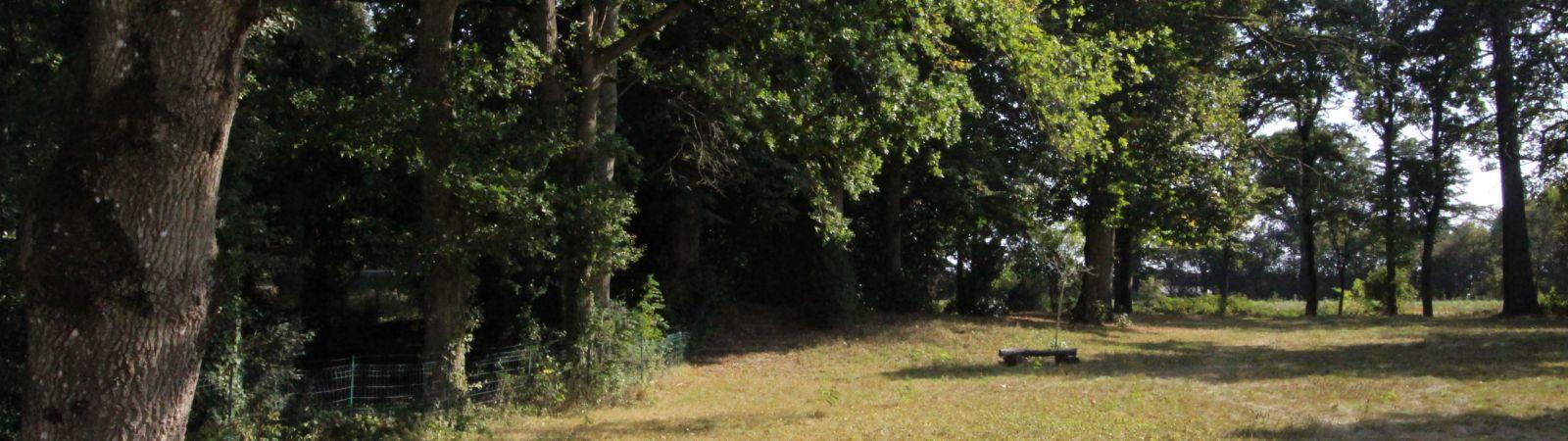 photo 9: Demeure d'exception aux portes de Rennes